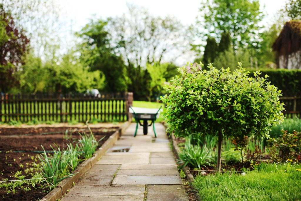 Verwinkelter Garten