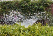 Heckenbewässerung